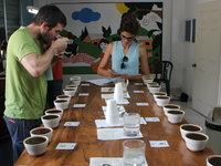 Naučíme vás poznat nejen  rozdíl v aciditě kávy.