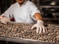 Domácí degustace čokolády s čokoládovnou Janek + 7 tabulek čokolády, Lískovka a čokoláda na domácí kakao