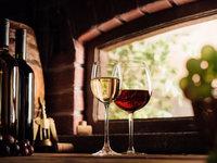 Domácí degustace vín - Itálie vs Chorvatsko + bedna šesti druhů vína