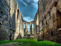 Nedaleko vinic stojí pozůstatky úchvatného gotického kláštera Rosa coeli v Dolních Kounicích.