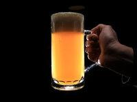 Domácí pivní degustace - pivní klasika z minipivovaru Zlatá kráva
