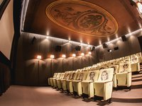 Malý sál kina Lucerna je vám k dispozici.