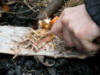 Rozdělání ohně pomocí křesadla a březové kůry