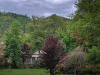 Okolní lesy Karlových Varů vyzývají ke krásným procházkám