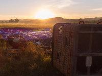 Není nic krásnějšího, než za východu slunce rozbalit balón trávy pokryté ranní rosou.