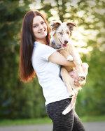 Online psí škola: 19 lekcí, 2 eBooky a roční poradenství od profesionálů