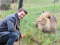 Kdo by nechtěl fotku se lvem