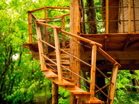 Jen pár schodů vede do vašeho stromového příbytku