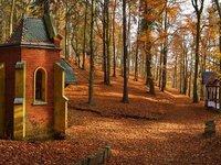 Lázeňské lesy lákají k odpočinku v každém ročním období