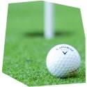 Den s golfem, , 1 osoba, 4 hodiny